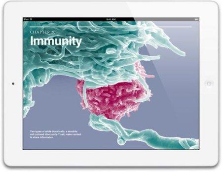 Слухи: производство Apple iPad 5 начнется в июле